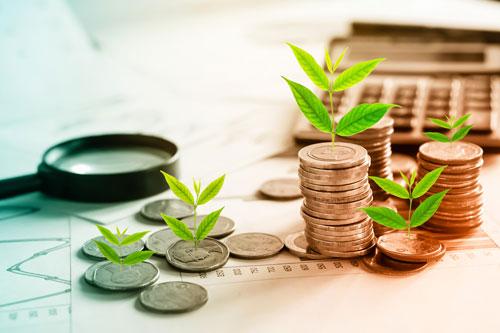 Kleine Pflanzen wachsen auf Münzen